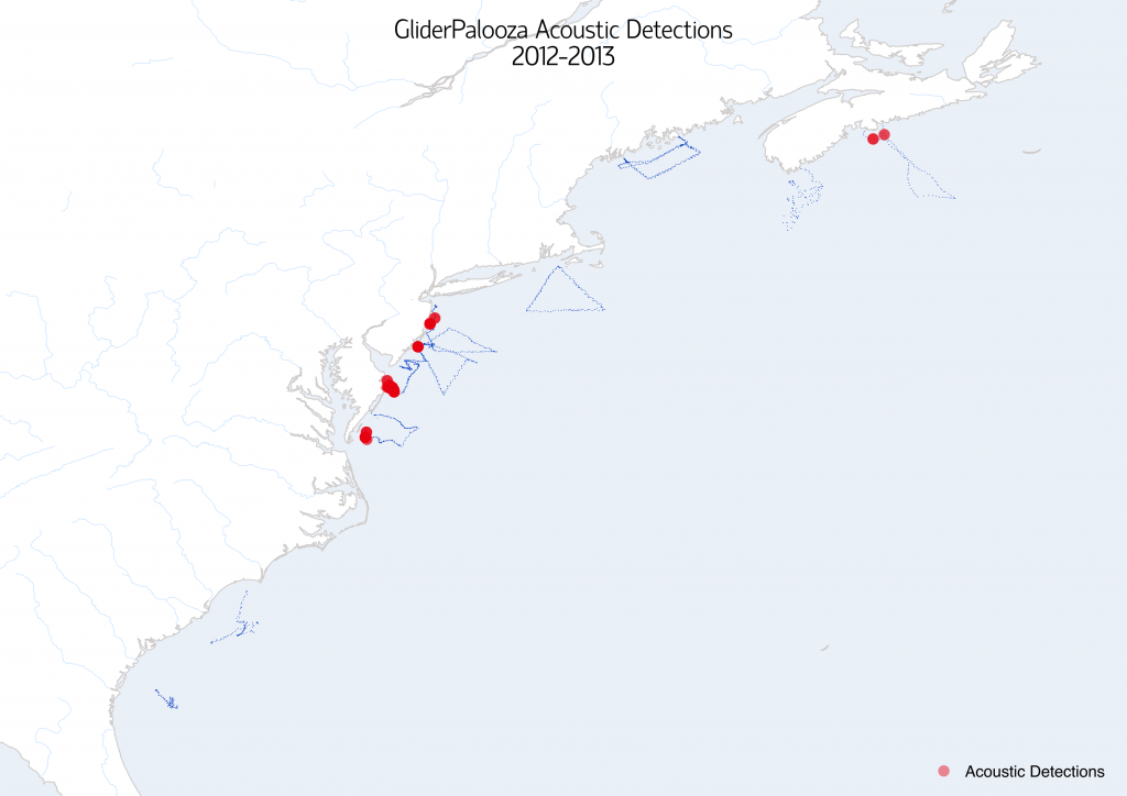 gliderpalooza_detections