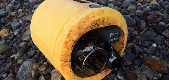 Lost and found: Labrador tracking equipment washes ashore in Scotland