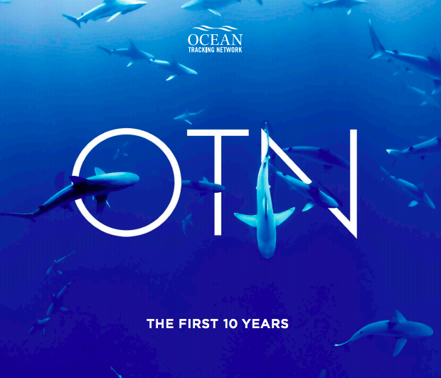OTN 10 year reflection