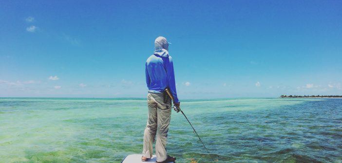 Collaboration in the Florida Keys takes species from mystery to science