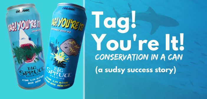 Tag! You're It! conservation in a can: a sudsy success story