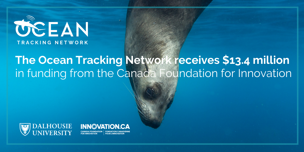 The Ocean Tracking Network receives $13.4 million in funding from the Canada Foundation for Innovation