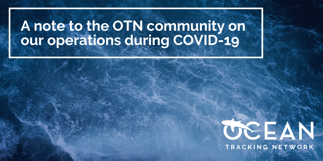 A note to the OTN community on our operations during COVID-19