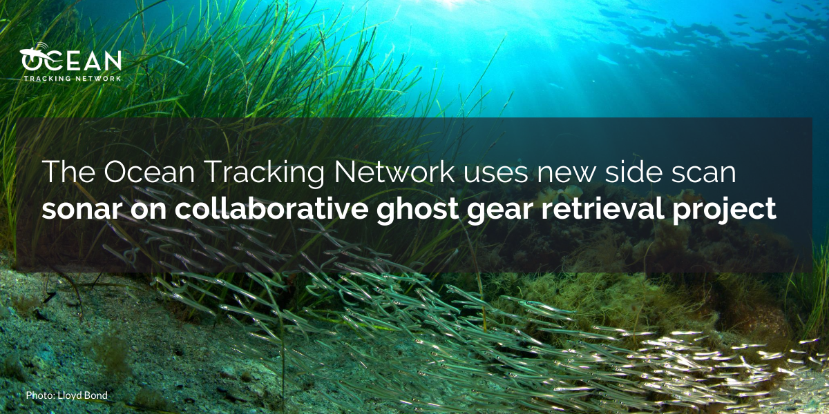 The Ocean Tracking Network uses new side scan sonar on collaborative ghost gear retrieval project